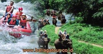 Rafting & Naik Gajah di Bali