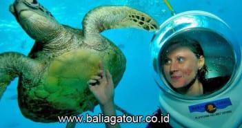 Seawalker Sanur Bali