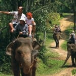 wisata naik gajah bali 2