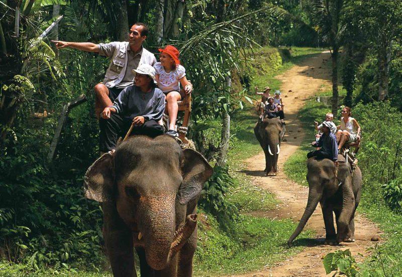 Wisata Naik Gajah bersama Bakas Levy Adventure