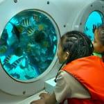 Odyssey Submarine Bali 2