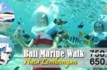 bali marine walk