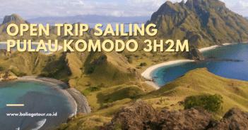 Paket Tour Pulau Komodo Dari Bali